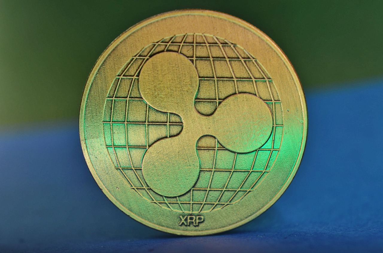 Will the SEC buy XRP Holders' 'no common enterprise' claim?