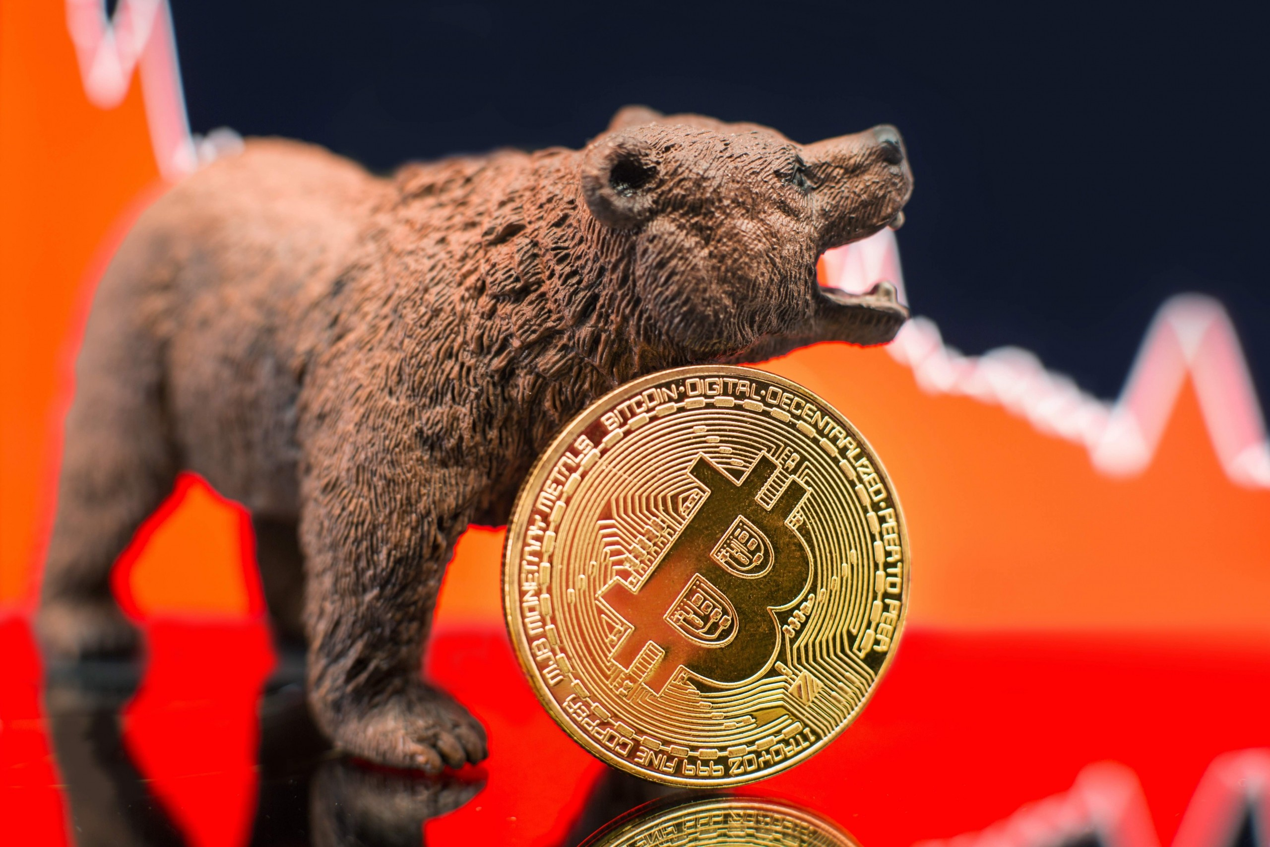 What is the status of Bitcoin's Bull Market