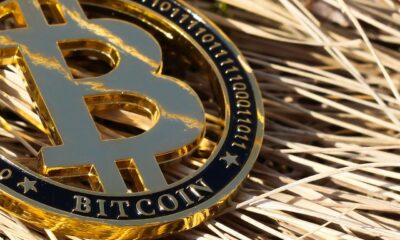 Bitcoin: What does increasing retail interest mean for its long-term price movement?