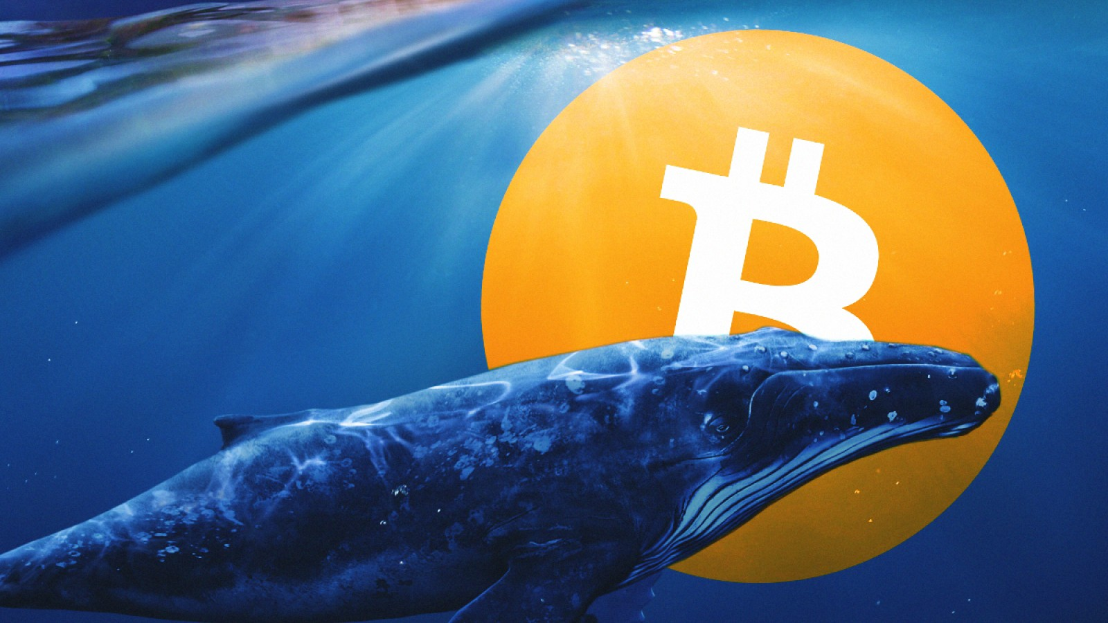 This could indicate the next profitable levels for Bitcoin