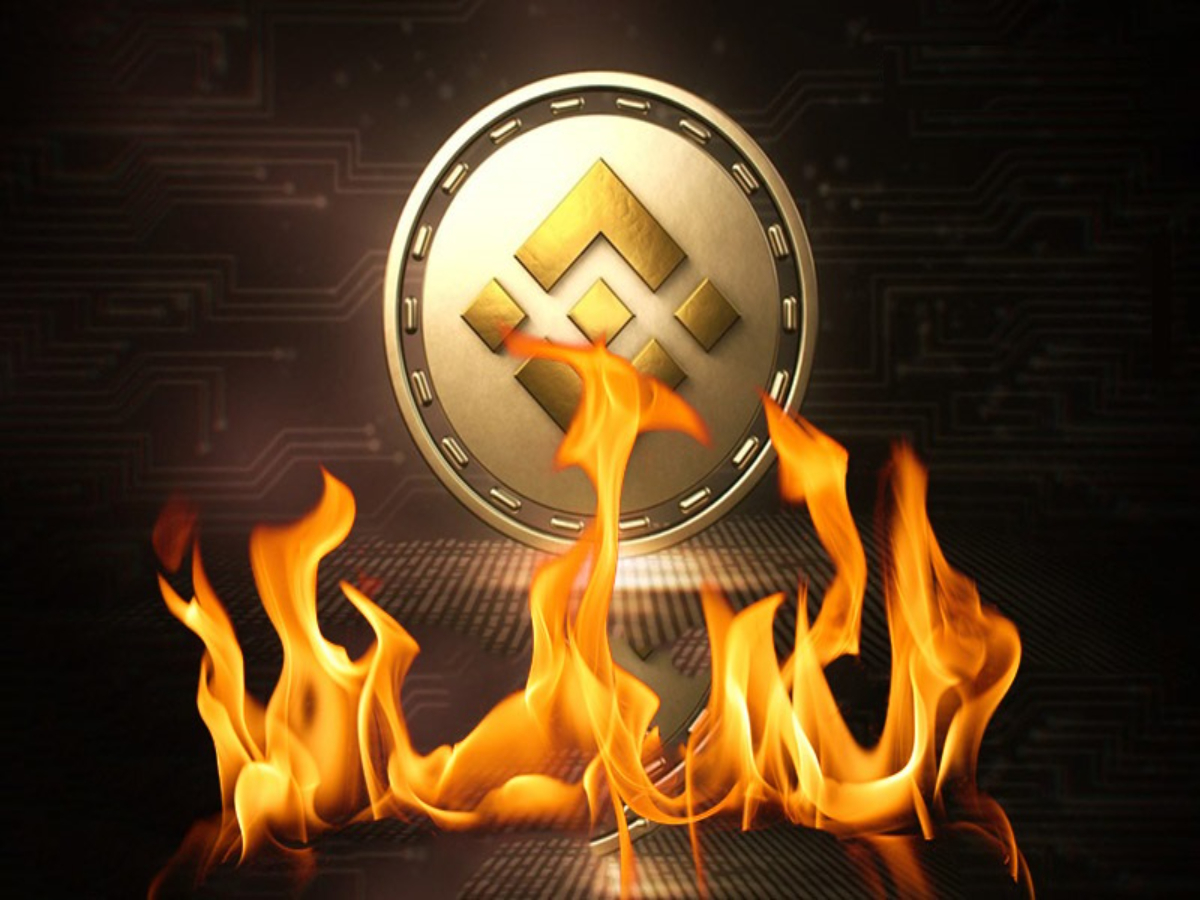 Should you bet on Binance Coin regaining its market position from Cardano