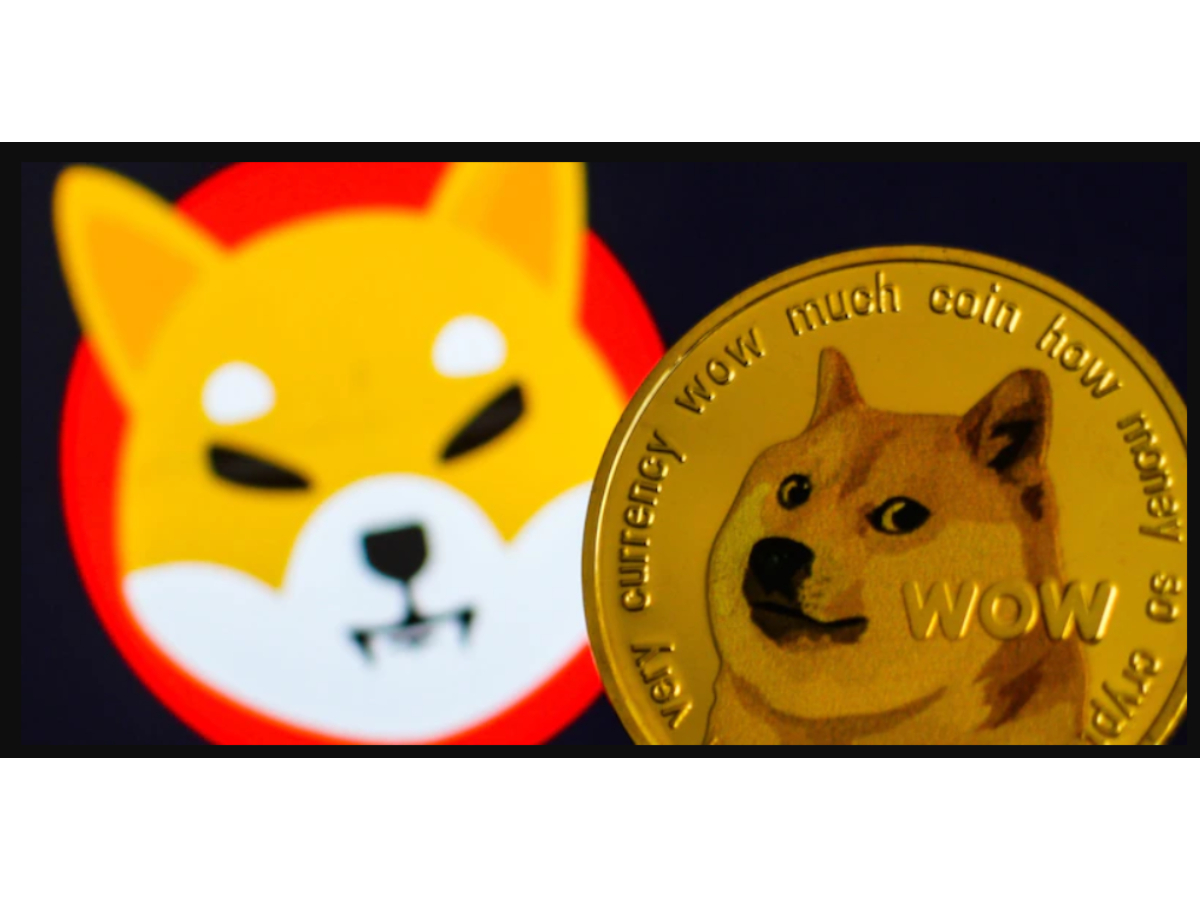 This is why Dogecoin and Shiba Inu are not what they used to be anymore