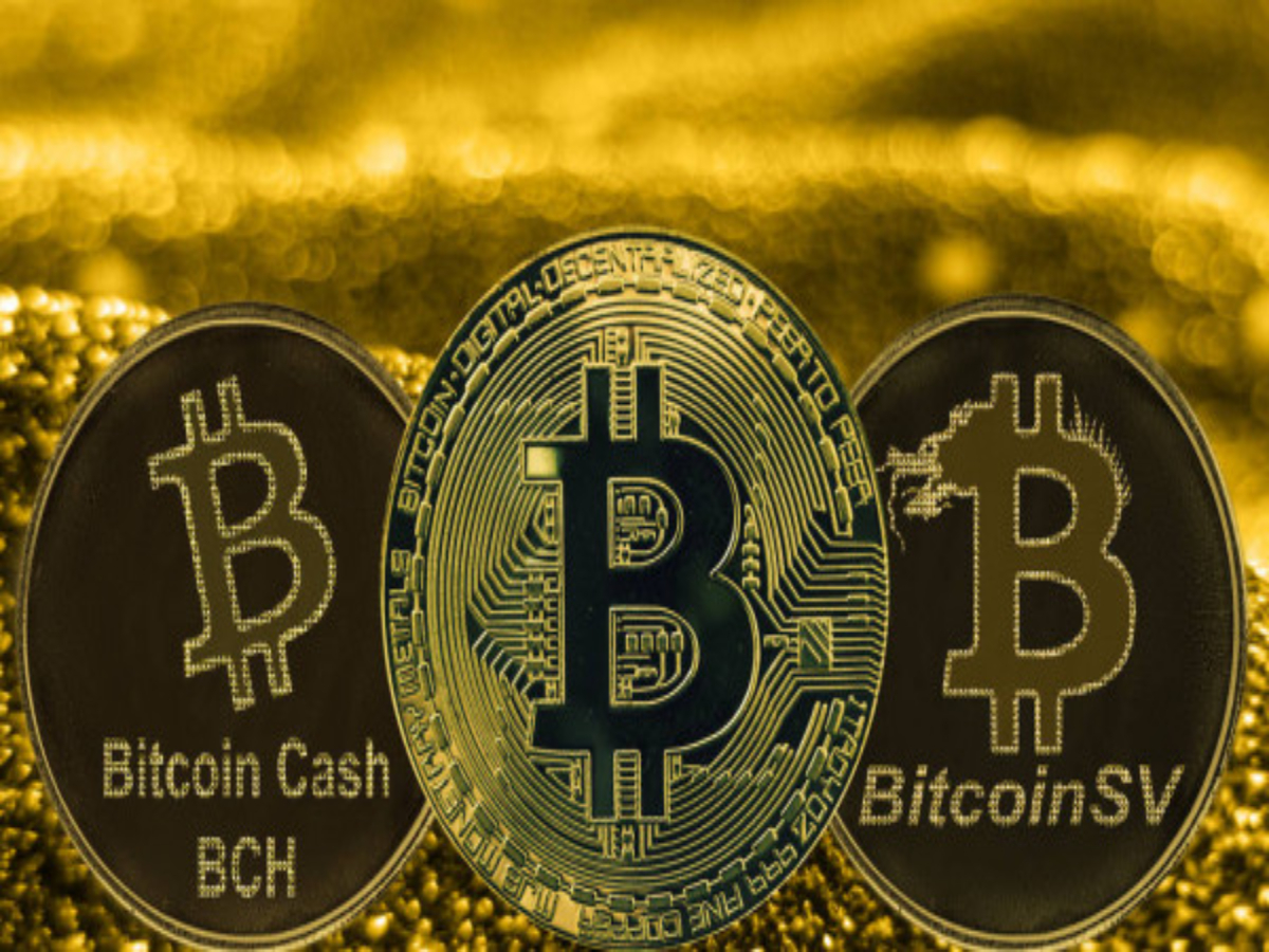 Are Bitcoin Cash, Bitcoin SV holding up well during this market phase